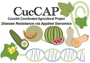cuccap-logo