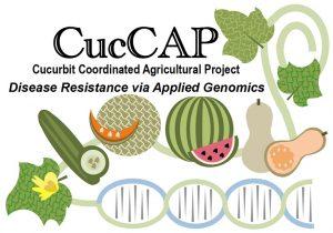cuccap logo